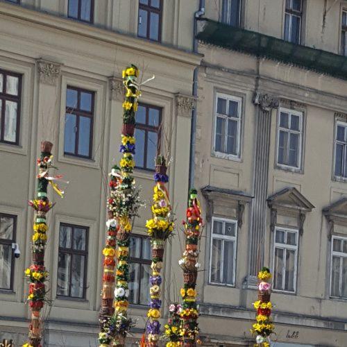 Cvijetnica u Krakovu-1